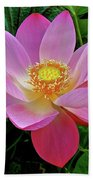 Pink Blooming Lotus Beach Towel