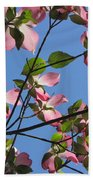 Pink Dogwood Beach Towel