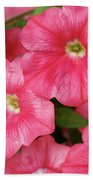 Pink Petunias Beach Towel