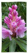 Pink Rhododendron 0070 Beach Towel