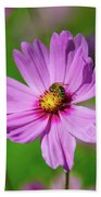 Pollination  Beach Towel