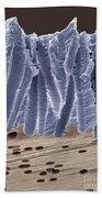Polycarbonate Filter Beach Towel