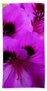 Purple Flowers  Beach Towel