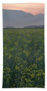 Rapeseed Dawn Beach Towel
