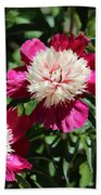 Red And Pink Peony Beach Towel