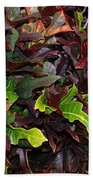 Red Green  Leaves Beach Towel