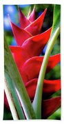 Red Heliconia Hawaii Beach Sheet