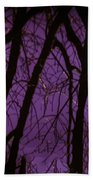 Spring Reflections Beach Towel