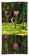 Reflective Wild Water Lilies Beach Towel
