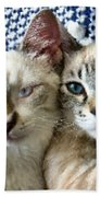 Rescued And Spoiled Beach Towel