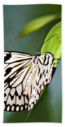 Rice Paper Butterfly 5 Beach Towel