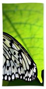 Rice Paper Butterfly 6 Beach Towel