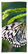 Rice Paper Butterfly 7 Beach Towel
