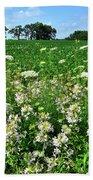 Roadside Wildflowers In Mchenry County Beach Towel