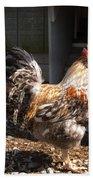Rooster In A Coop Beach Towel