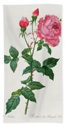 Rosa Indica Beach Towel
