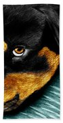 Rotty Beach Towel