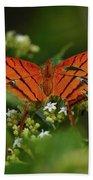 Ruddy Daggerwing Butterfly Beach Towel