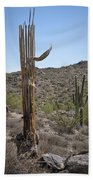 Saguaro Skeleton Beach Towel