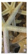 Starfish Treasure Beach Towel