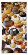 Shell Background Beach Towel