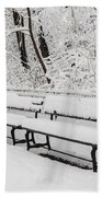Snow In Central Park Nyc Beach Towel