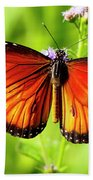 Soldier Butterfly Beach Towel