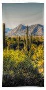 Sonoran Desert Beach Towel