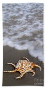 Spider Conch Shell Beach Towel