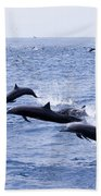 Spinner Dolphins Beach Towel