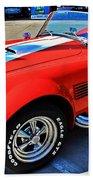 Sports Car Beach Sheet