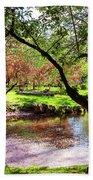 Spring At Tappan Park Pond Beach Towel