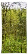 Spring In The Gorge Beach Towel
