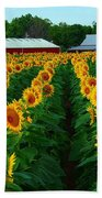 Sunflower Field #4 Beach Towel