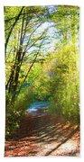 Sunny Autumn Path Beach Towel