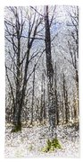 Sunrise Snow Forest Art Beach Towel