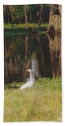 Swamp Bird Beach Towel