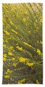 Tarweed Flowering Beach Towel