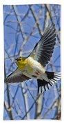 The American Goldfinch In-flight, Beach Towel