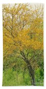 The Leaning Tree Beach Towel