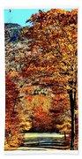 The Richness Of Autumn Treasures Beach Sheet