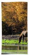 The Salt River Wild Horses  Beach Towel