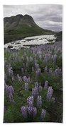 Thofafoss Waterfall Iceland 1571 Beach Towel