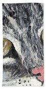 Tiger Cat Beach Sheet