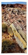 Tracks Of Color In Valley Of Fire Beach Towel