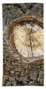 Tree Bark 2 Beach Towel
