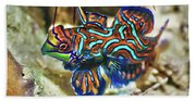 Tropical Fish Mandarinfish Beach Towel