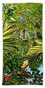 Tropical Plants Beach Towel