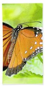 Tropical Queen Butterfly Framing Image Beach Towel