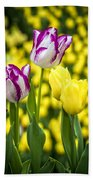 Tulips Garden Beach Towel